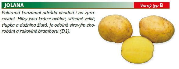 Odrůdy brambor, které stojí za ochutnání