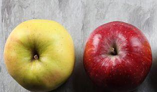 Odrůdy roli nehrají, Češi jablka rozlišují zejména na červená azelená