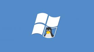 Linux windows tux