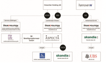 Právní struktura holdingu InsurEvolution
