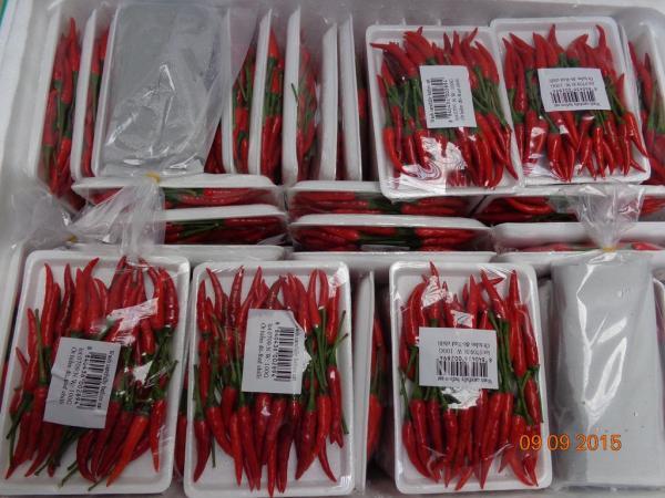 Nebezpečné chilli papričky