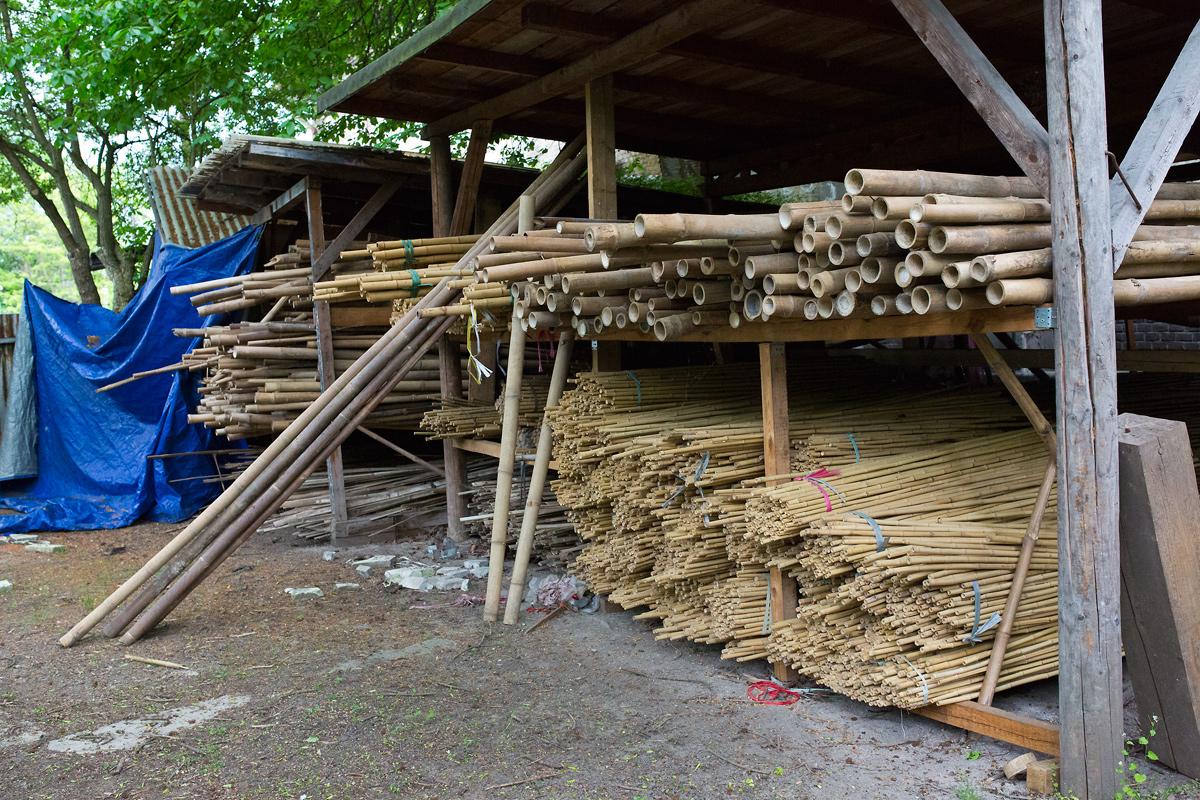 V branických ledárnách vznikají unikátní bambusové konstrukce