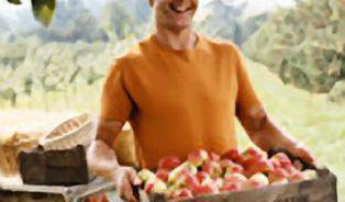 Jediné, co ještě chybělo: Hlídač farmářských trhů!