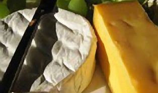 Vědci berou tučné sýry na milost