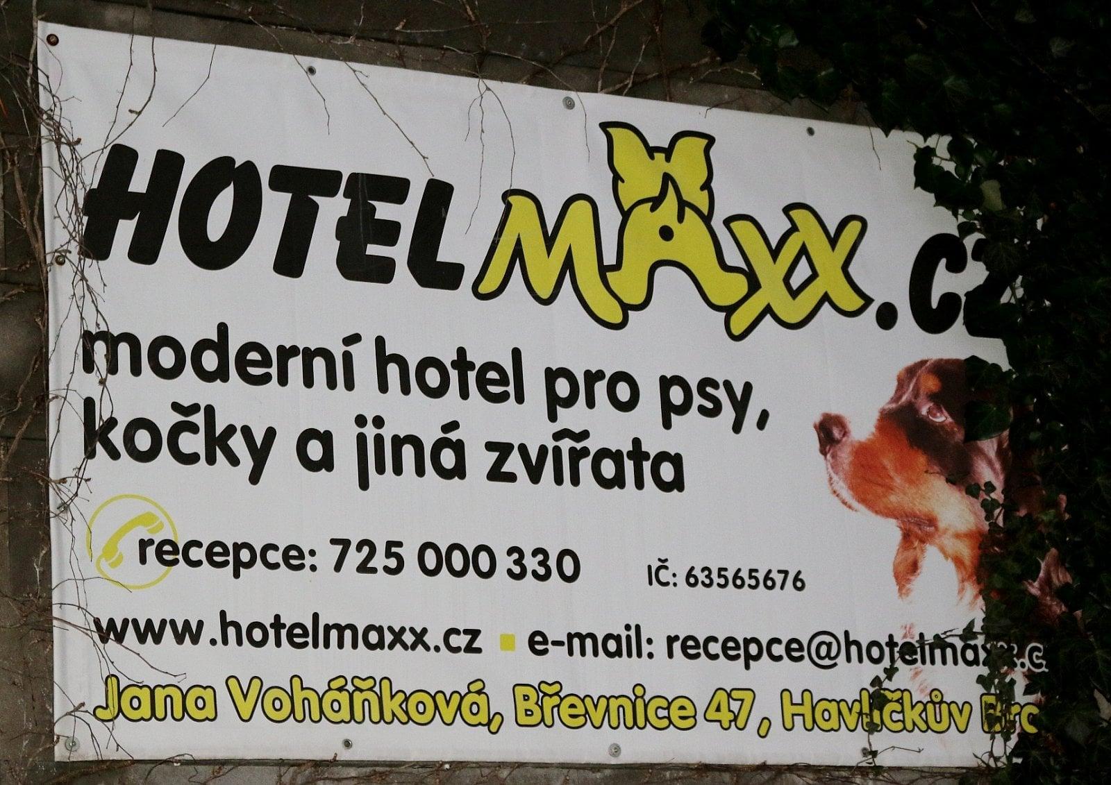 Hotel pro psy a kočky v Břevnici u Havlíčkova Brodu