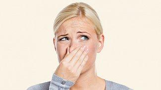 Čím mazat odřený nos?