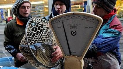 Vitalia.cz: Prodej kaprů 2018: kdy a kde koupíte vánoční rybu