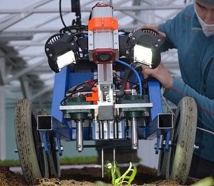 Robotická plečka startupu Ullmanna.
