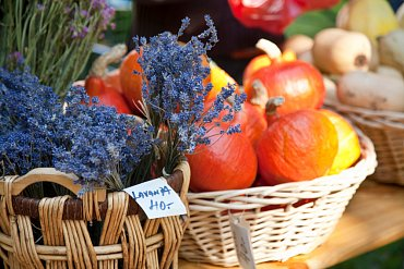 Podzim je krásný - i na farmářském trhu v Karlíně