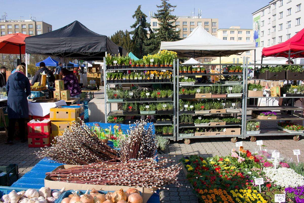 Farmářské tržiště na Kubáni