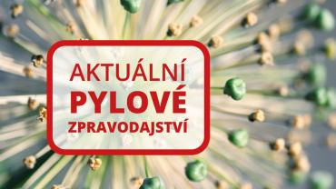 120na80.cz: Objevila se první pylová zrna trav