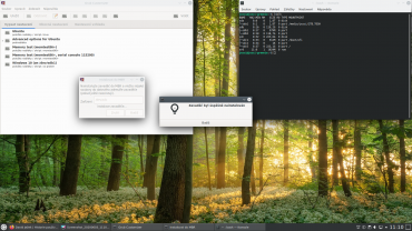 Greenie Linux 20.04 - Grub Customizer