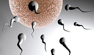 Když zhubnete, vrátí se vám spermie