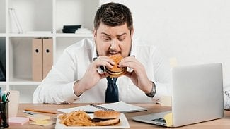 Podnikatel.cz: Musí vám šéf umožnit, abyste měli teplou stravu?