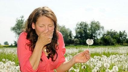 Vitalia.cz: Osvědčený trik pro alergiky je kapka oleje do nosu