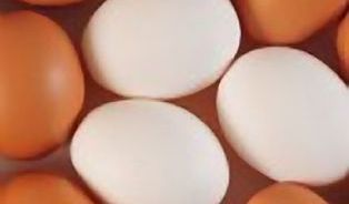 Jsou domácí vajíčka bezpečná, nebo ne?