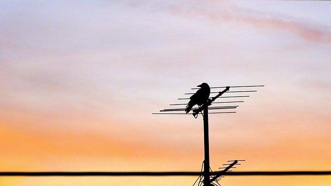 [aktualita] Polský vysílač stále ruší televizní signál na Jesenicku