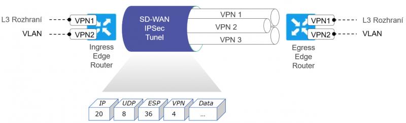 Segmentace v SD-WAN síti