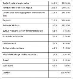 Kolik peněz utratí Češi ročně za jednotlivé položky?