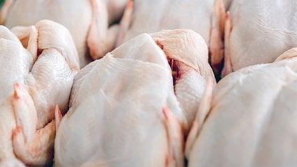Vitalia.cz: Do Česka se dostalo 16tun masa se salmonelou