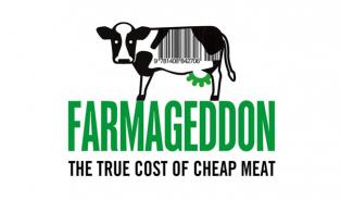 Skutečná cena levného masa