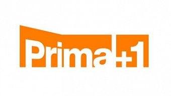 DigiZone.cz: Skylink: zpožděný kanál Prima+1