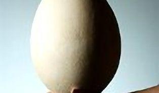 Vaječné hodování