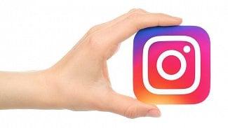 Podnikatel.cz: Firemní Instagram. Lidi na koťátka nenalákáte