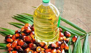 Vitalia.cz: Lékaři budou řešit, zda je palmový olej nezdravý