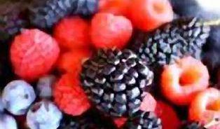 Lesní plody jsou naše jediné skutečně původní ovoce
