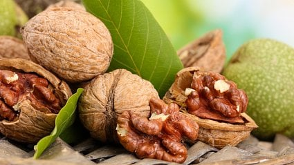 Vitalia.cz: Zázračné složení vlašských ořechů