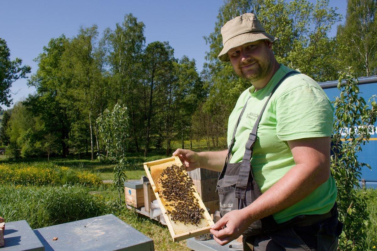 Ekologický včelař Vojtěch Hajný