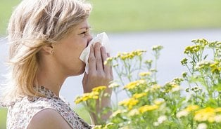 Vitalia.cz: Jak bojovat proti alergii na pyl? Mytím vlasů