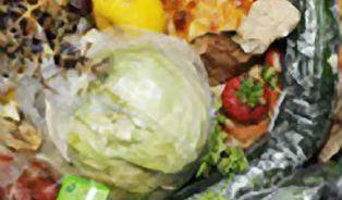 Dovoz polských potravin do Česka se zvýšil čtyřnásobně