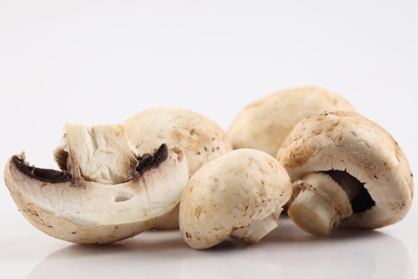 Čerstvá zelenina, čerstvé houby