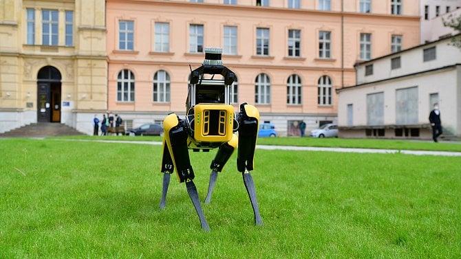 [aktualita] ČVUT má Spota od Boston Dynamics. Poprvé se vyvenčil na travnatém náměstí
