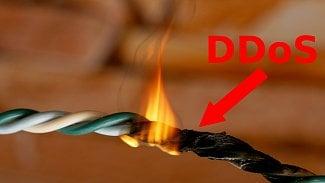 DDoS útoky: jak se účinně bránit?