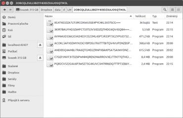 A takto vypadá zašifrovaný trezor. Nečitelná data, nesrozumitelný název, ale velikost souborů může napovědět