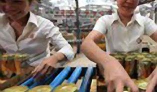 České pivo s čínským chmelem? Co není, může být