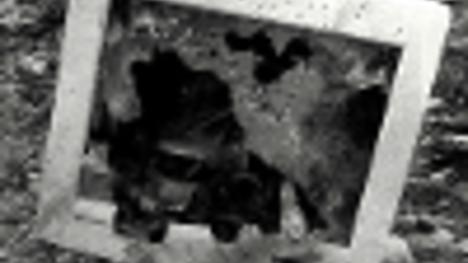 datování týmu magma grunt grunt pravidlo 34