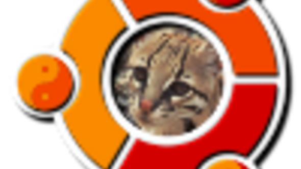 Ubuntu 11.10 - perex