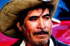 Cowboy - Detail