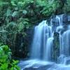 Ilustrační obrázek: Uklidňující pohled na vodopád
