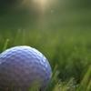 Ilustrační obrázek: Zahrajte si golf jako profesionálové