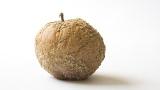 10milionů korun, nová pokuta za nekvalitní potraviny. Prosazuje jivláda