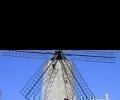 Podnikatel versus zákony: Boj s větrnými mlýny