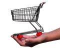 I podnikatelé mohou úspěšně shoppovat na internetu