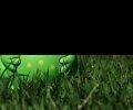 V reálu obyčejná Žabka neoslnila