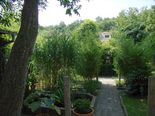 Magická zahrada 5