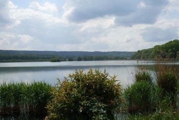 Horecký rybník